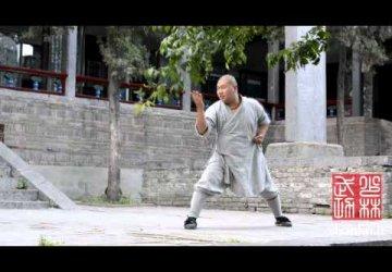 saolino_vienuolynas._tolima_sirdies_ir_proto_vartu_gynyba_kin._chang_hu_xin_yi_men_chang_hu_xin_yi_men_