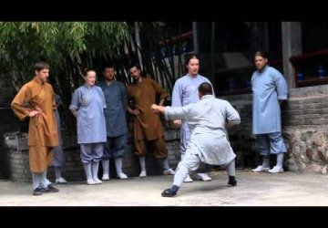 a_journey_to_the_shaolin_temple_2014_shaolin.lt